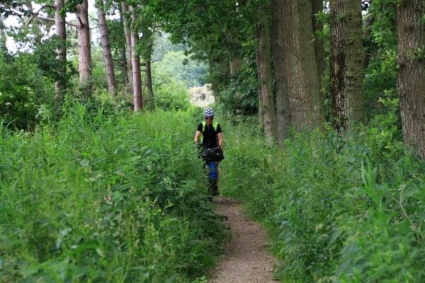 Billede af Tine Henriksen, der cykler i en skov på en lille bevokset sti. Fra Bikepacking, Danmark rundt