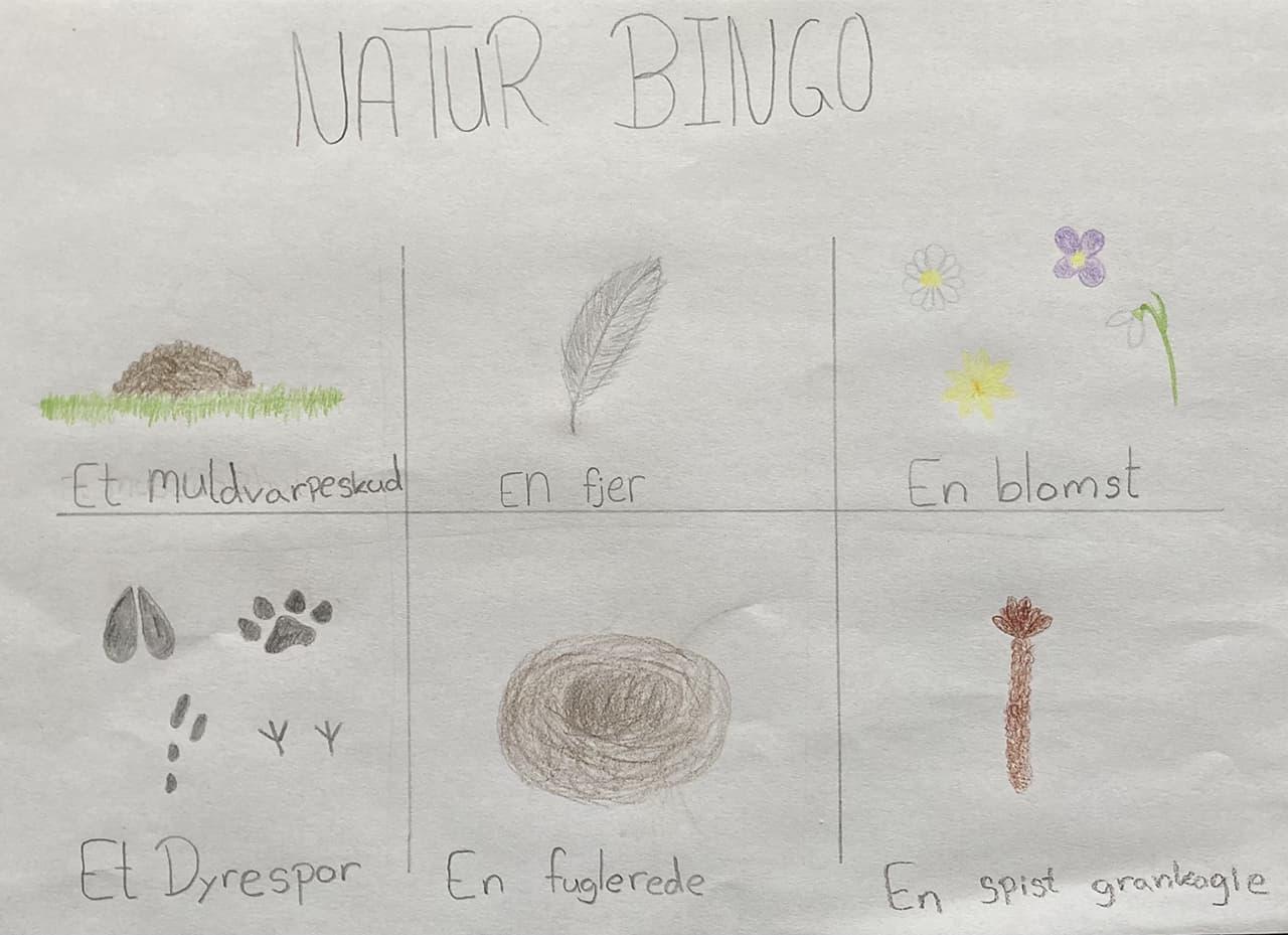Naturbingo plade, tegnet af min datter, Karen B. Sørensen