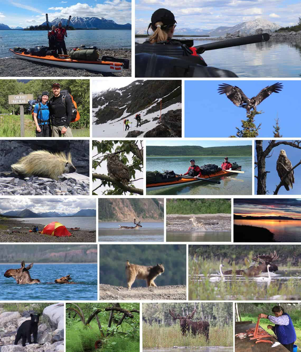 Udvalgtebilleder Yukon River