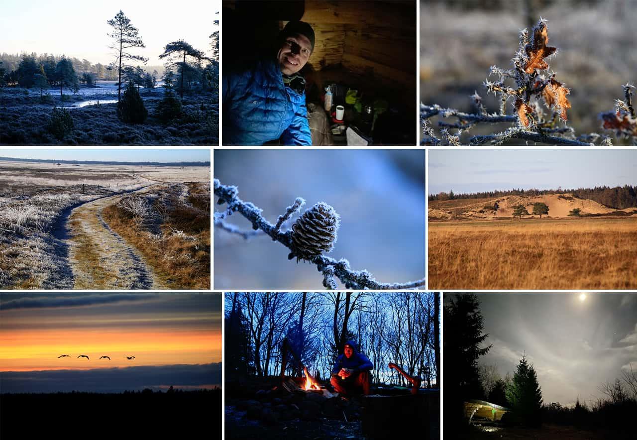 Collage af billede fra Vandretur, Frederikshåb Plantage og Randbøl Hede [Mikroeventyr] med Erik B. Jørgensen