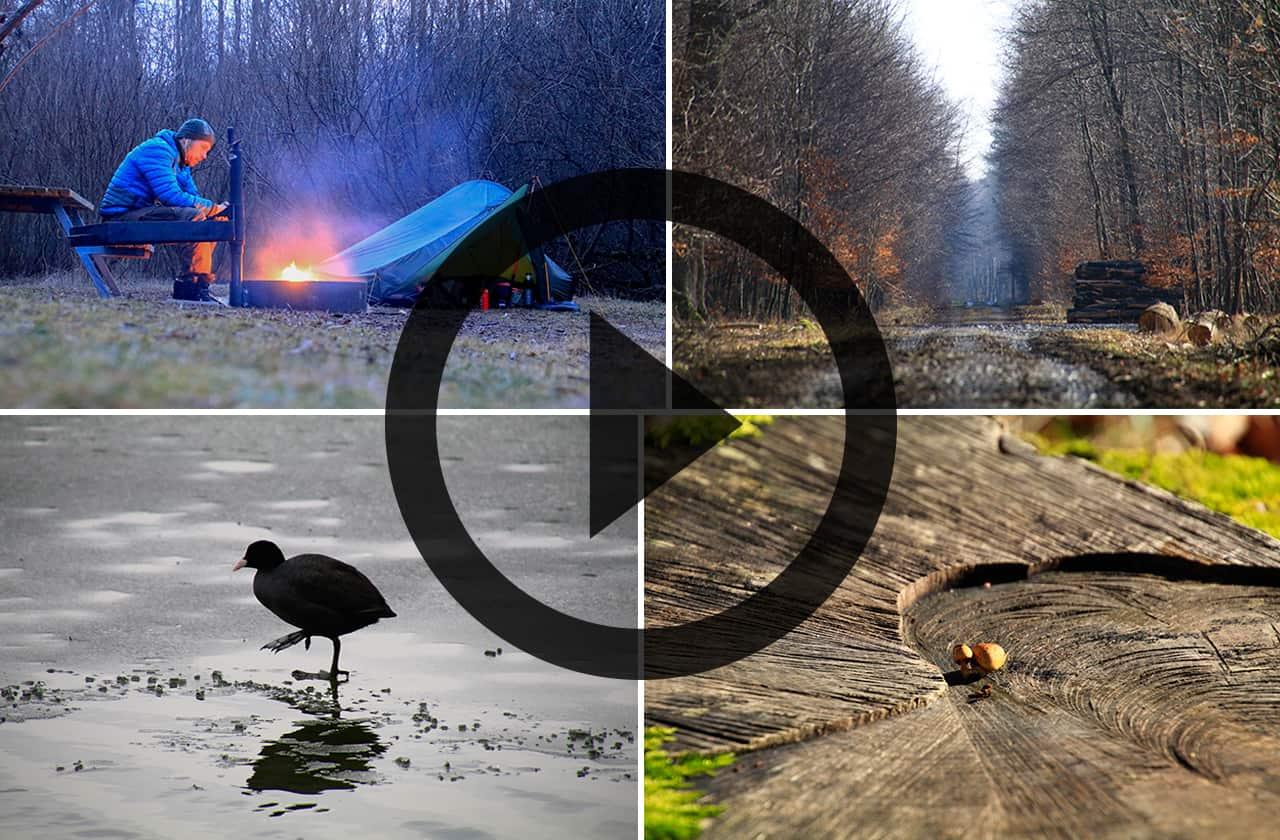Billedecollage fra Vandretur, Sorø og skovene syd for [Mikroeventyr]