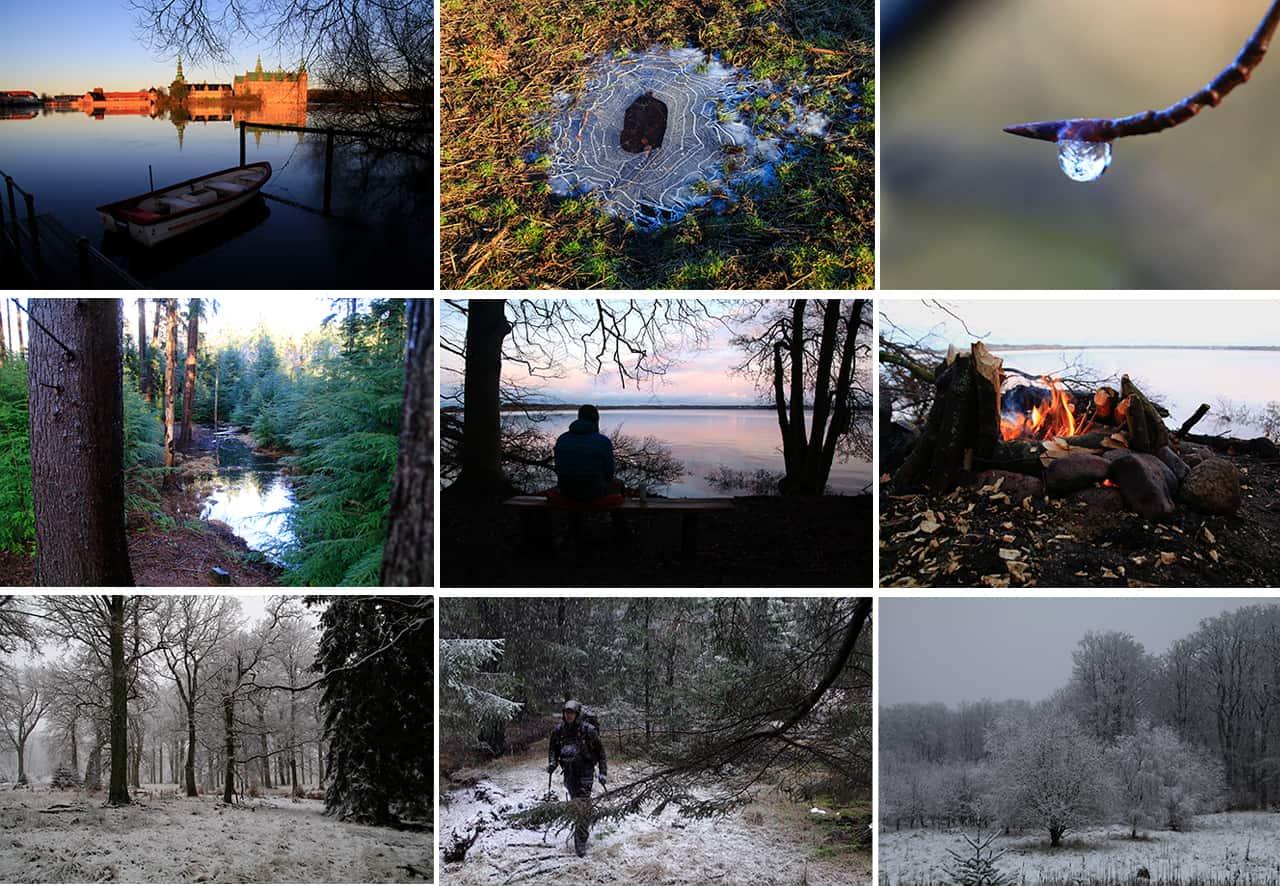Collage af billeder, fra Vandretur i Gribskov, på kompaskurs [Mikroeventyr]